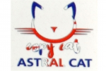 Copy Cat Astral Cat Aroma fruchtiger Beerenmix mit Eukalyptus, Anis und Menthol Kick