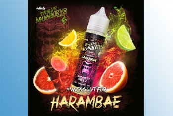 HARAMBAE - Twelve Monkeys Liquid 60ml