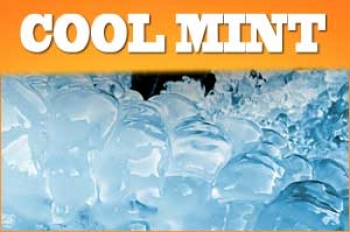 Cool Mint Liquid 30ml