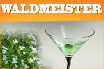 Waldmeister Aroma 10ml + Chubby 100ml Flasche