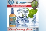 Winter Mint – Hexocell Shake & Vape 30ml/100ml eisgekühlte Minze
